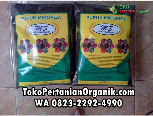Harga pupuk bio mikoriza di Asahan, Agen pupuk mikoriza di Kisaran,   Distributor pupuk mikoriza plus di Batu Bara, Produsen pupuk mikoriza di   Limapuluh