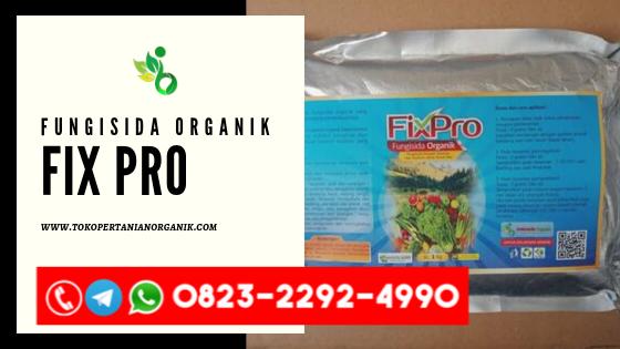 Jual obat hama padi di Lampung, Harga obat hama uret alami di Metro, Agen obat hama wereng di Lampung Tengah, Produsen obat hama tanaman di Lampung Utara, Distributor obat hama walang sang