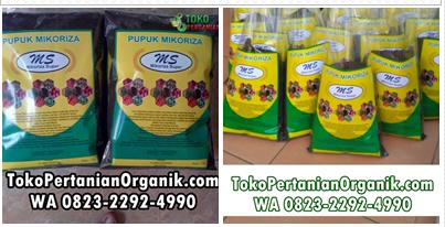 Agen pupuk bio mikoriza di Demak, Distributor pupuk mikoriza di di Purwodadi, Produsen agen hayati mikoriza di Jepara, Jual pupuk mikoriza di Banjarnegara, Harga pupuk bio mik